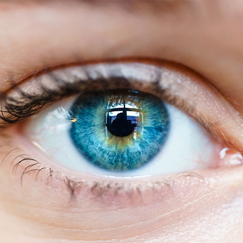 Enfermedades de la córnea y superficie ocular